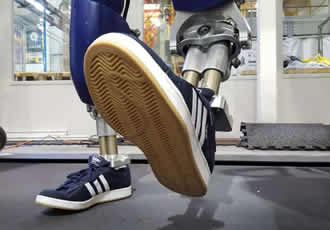 Efficient-walking humanoid gets new trainers