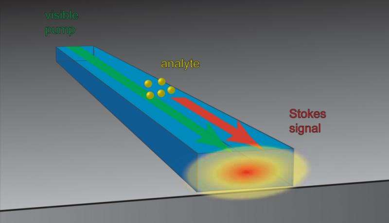 Sensor measures chemistry on chip