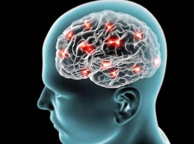 'Antimemories' could revolutionise neuroscience