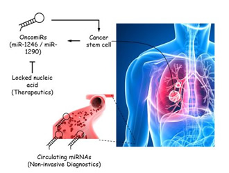 A new way to diagnose and treat lung cancer