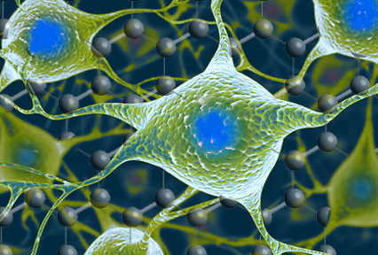 Graphene shown to safely interact with neurons in the brain