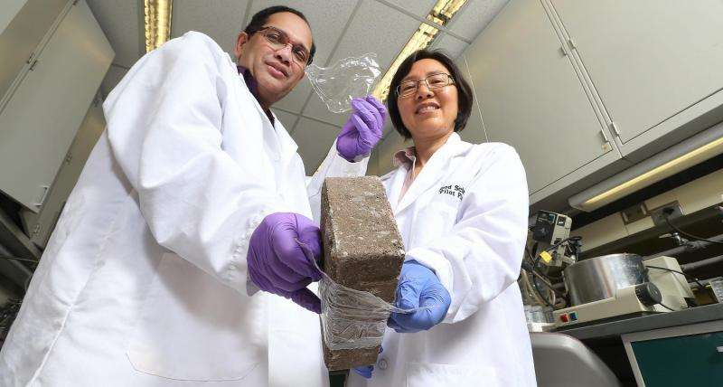 Cellulose is the base of flexible biodegradable films