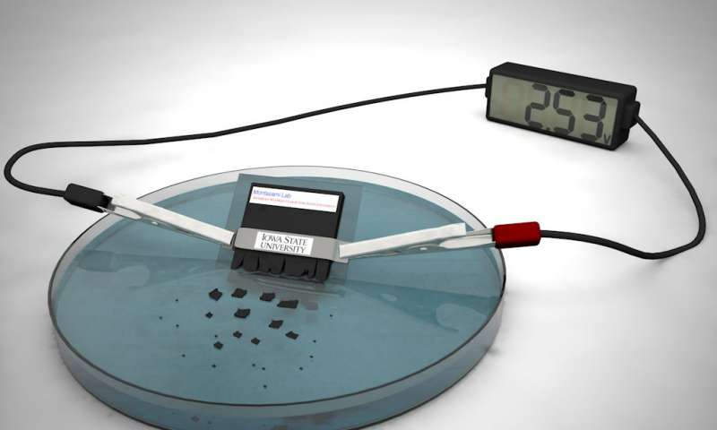 Quick-destructing battery could power 'transient' devices