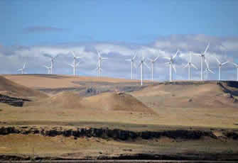 Carbon emissions cut significantly thanks to wind farms