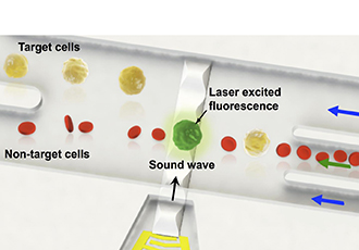 Sound waves achieve single cell level sorting technology