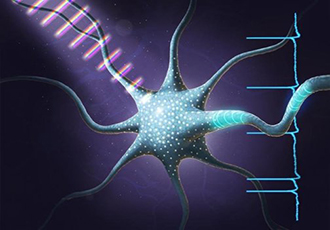 Ultrafast light pulses can trigger neuron activity