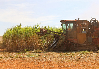 Brazilian ethanol can replace 13.7% of world's crude oil consumption