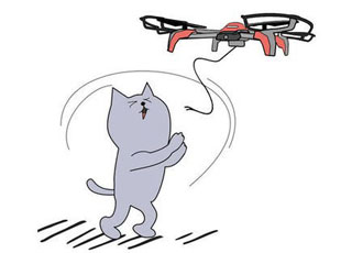 Up, up and away with the pet drone
