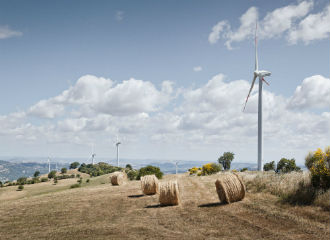 Wind project success in renewable energy auctions