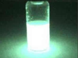 A bright 'glow stick' marker for cells