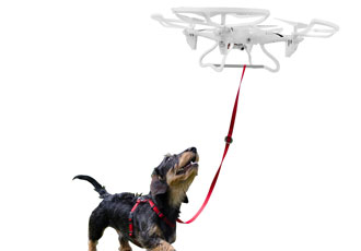 Give the dog a drone and you'll get hands-free walkies