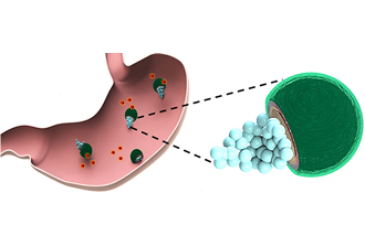 Micromotors safely release antibiotics in the stomach
