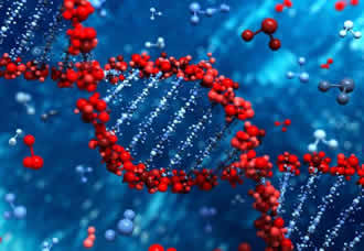Switched-on DNA could aid nano-electronic applications