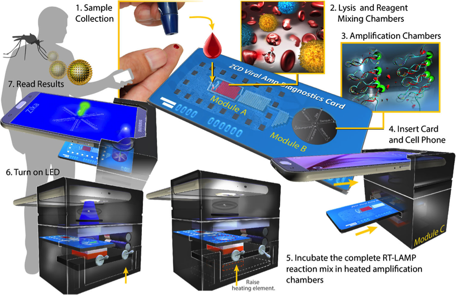 Integrated lab-on-a-chip quickly detects multiple pathogens