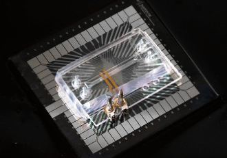 Organ-on-chip senses electrical activity and cell resistance