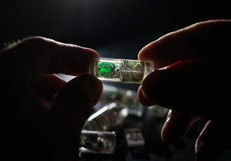 Ingestible bacteria on a chip could help diagnose disease