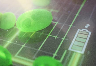 Harnessing the power of algae for greener fuel cells