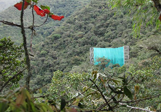 Giant curtain aids cloud forests study