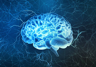 Neuro electrical stimulation improves memory