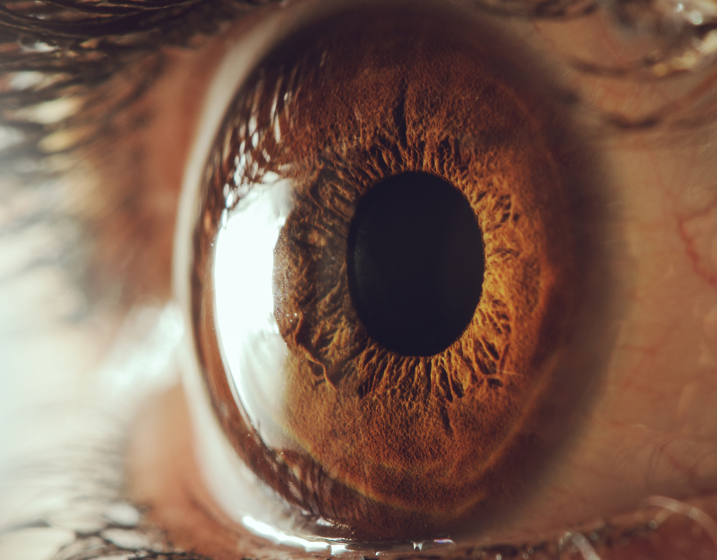 Bionic eyes can 'cure' blindness