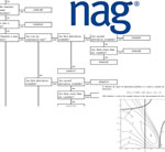 Electronic Engineers' Optimization Guide from NAG