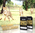 World's Fastest Write Speed SD Memory Cards from Toshiba